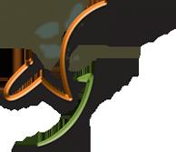 Wild Ginger Logo